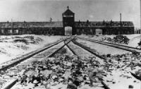 Anniversaire découverte Auschwitz-270115